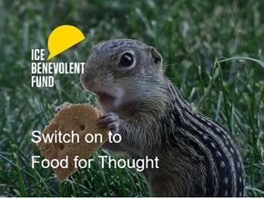Switch on to Food for Thought chipmunk.jpg